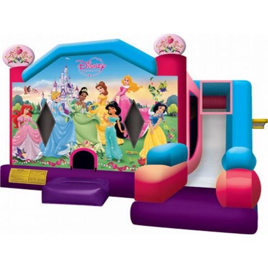 Disney Princess Combo Slide