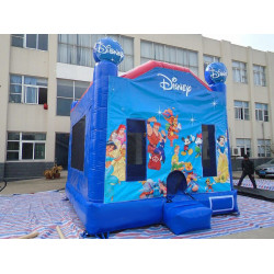 Disney Jumping Castle