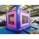 Commercial Grade Jumping Castle